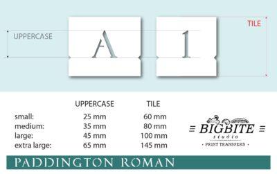 Elegant Stenciled Letters - Font Paddington Roman - preview 0103