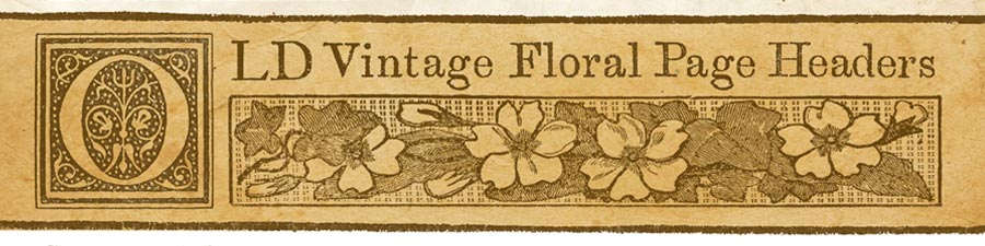 free-printable-vintage-floral-graphic_banner