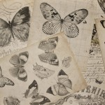 resourcers04_vintage-butterfly-background
