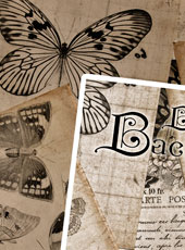 resourcers04_vintage-butterfly-background_ico